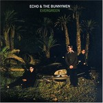 Echo & The Bunnymen, Evergreen