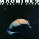 Machines of Loving Grace, Concentration