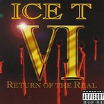 Ice-T, VI: Return of the Real