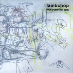 Lambchop, What Another Man Spills mp3
