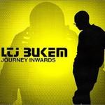 LTJ Bukem, Journey Inwards