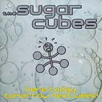 The Sugarcubes, Here Today, Tomorrow Next Week!