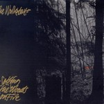 The Walkabouts, Setting the Woods on Fire