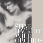 Steve Hackett, Wild Orchids