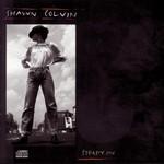 Shawn Colvin, Steady On