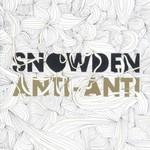 Snowden, Anti-Anti