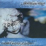 The Pineapple Thief, Variations on a Dream mp3
