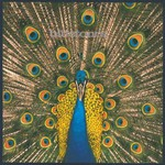 The Bluetones, Expecting to Fly