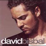 David Bisbal, David Bisbal