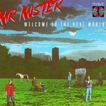 Mr. Mister, Welcome to the Real World