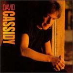 David Cassidy, David Cassidy