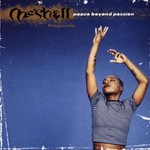 Me'Shell NdegeOcello, Peace Beyond Passion
