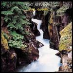 Cat Stevens, Back to Earth
