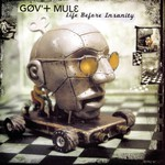Gov't Mule, Life Before Insanity mp3