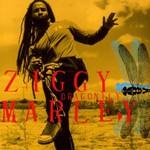 Ziggy Marley, Dragonfly