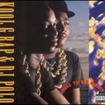 Kool G Rap & DJ Polo, Road to the Riches