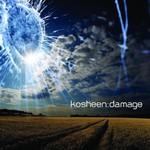 Kosheen, Damage