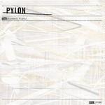 Pylon, The Standard Fight