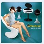 Zebrahead, Waste of Mind mp3
