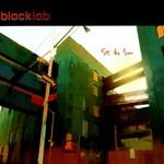 Black Lab, See the Sun