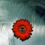 Audio Adrenaline, Bloom