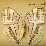 Xavier Rudd, White Moth