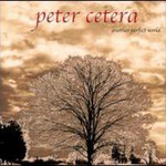 Peter Cetera, Another Perfect World