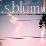 F.S. Blumm, Zweite Meer