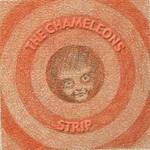 The Chameleons, Strip