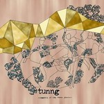 Tunng, Comments of the Inner Chorus