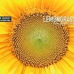 Lemongrass, Fleur Solaire mp3