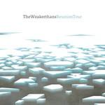The Weakerthans, Reunion Tour
