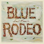 Blue Rodeo, Small Miracles mp3