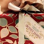 Boney James, Christmas Present mp3