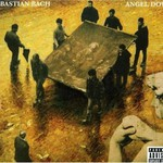 Sebastian Bach, Angel Down