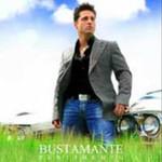 David Bustamante, Pentimento