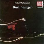 Robert Schroeder, Brain Voyager