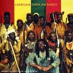 Tiken Jah Fakoly, L'Africain