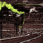 CJ Bolland, Electronic Highway