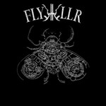 FlyKKiller, Experiments In Violent Light