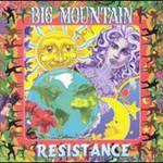 Big Mountain, Resistance