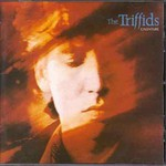 The Triffids, Calenture