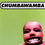 Chumbawamba, Tubthumper