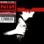 Nine Inch Nails, The Slip