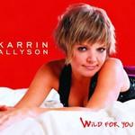 Karrin Allyson, Wild for You