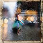 Joan Osborne, Little Wild One