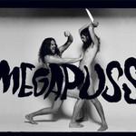 Megapuss, Surfing