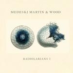 Medeski Martin and Wood, Radiolarians I