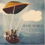 Augie March, Strange Bird