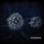 Cranes, Cranes